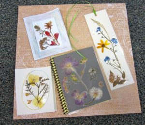 Pressed Flower Projects--Create a Bookmark