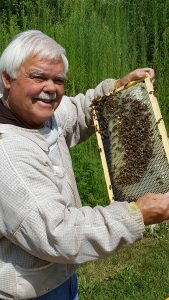 Honey Bees -- The Super Organism